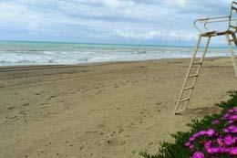 Деревня, пляж, море…